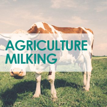 Agriculture-milking