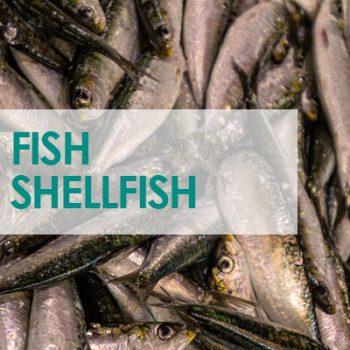 Fish-Shellfish